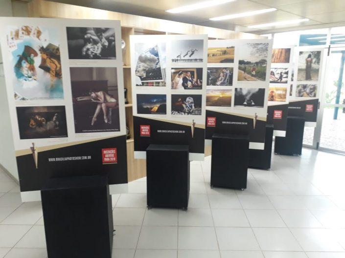 Exposições 2019